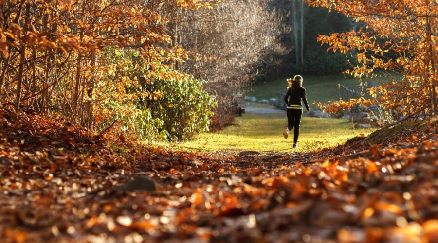 Aktywność jesienią